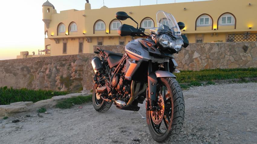 TigerXRX_02